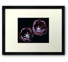 Dark and Mysterious - Burgandy Tulips Framed Print