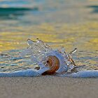 Splish Splash   by DebbyTownsend