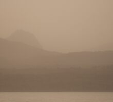 Landscape with ashes by fotovivencias