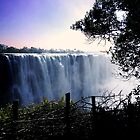 Victoria Falls Africa  by William9659