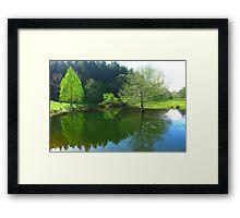 The Duck Pond - Robert Mann Framed Print