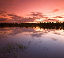 Fire in the Sky by Deepak Varghese