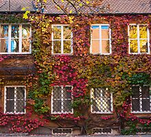The Fuggerei - Autumn Leaves by Stanley Tjhie