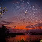 """Web Design"" - spider web at dusk by John Hartung"