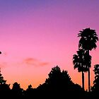 """Sunset Palms"" by Anthony Cherubino"