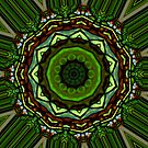 Tiffany Stained Glass Kaleidoscope. by Lee d'Entremont