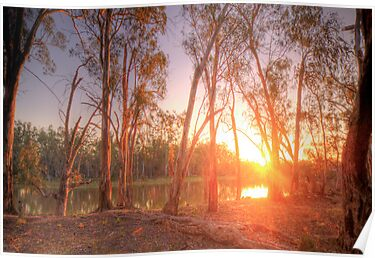 River Murray Sunset I - Renmark, South Australia by Mark Richards