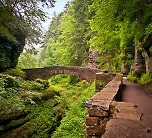 Enchanted Stone Bridge at Robert Treman Gorge by PhotoByTrace