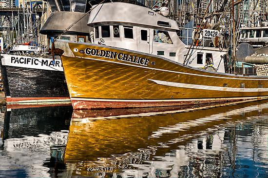 Golden Chalice by Carolann23