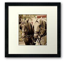 Horses Two Framed Print