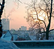 Winter in Tallinn by tutulele