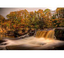 Autumn In Richmond Photographic Print