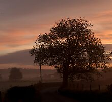 Endon Sunrise by David J Knight