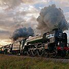 60163 Tornado & 70000 Britannia by Steve  Liptrot