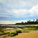 Mossy Rocks - Toowoon Bay Beach by Jacob Jackson