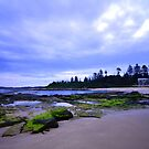 Mossy Green Rocks - Toowoon Bay Beach by Jacob Jackson