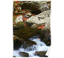 CASCADE,MIDDLE PRONG LITTLE RIVER Poster