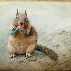 Squirrelly II by Lynn Starner