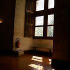 Window of a castle.  by Reneefroggy