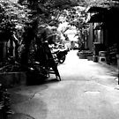 Leafy Laneways by Di-Trying