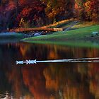 """Perfect Crisp Fall Day At The Park"" by Melinda Stewart Page"