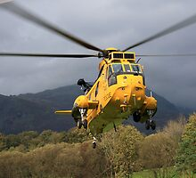 Sea King Helicopter by Tom Curtis