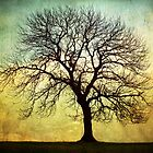 Digital Art Tree Silhouette by Natalie Kinnear