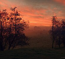 Endon Dawn by David J Knight