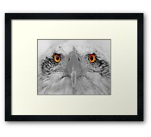 Look into my eyes, not around the eyes but in the eyes. Framed Print