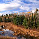 """""""  Autumn Marsh  """" by fortner"""