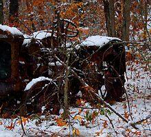 Left for Winter by Chuck Chisler