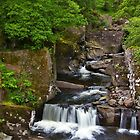 Bracklinn Falls in Summer by Susan Dailey