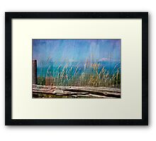 Summer Rendezvous Framed Print