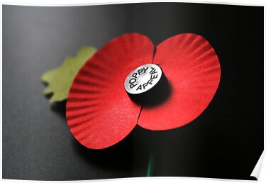 Poppy Appeal by patjila