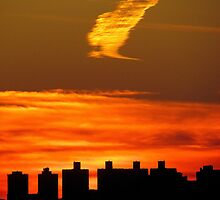 Autumn silhouette, New York City  by Alberto  DeJesus
