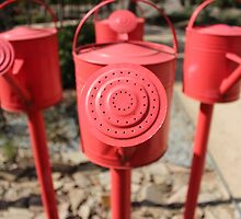 Red Watering Cans by JoelCollins