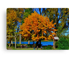 Golden Tree Tegernsee Germany Canvas Print
