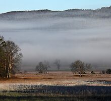 On A Crystal Morning by Gary L   Suddath