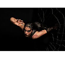 Black Widow springing from his spiderweb Photographic Print