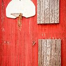 """Farm League"" - basketball hoop on farm by John Hartung"