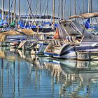 Canyon Lake Marina by venny
