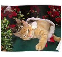 Cheshire Cat Grin ~ Cute Kittens in Love ~ Christmas Kitties in a Santa Hat Lying Down w/ Paws Stretched Out Poster