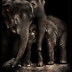 family affair (Mali) by ArtX
