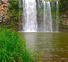 Dangar falls from below by Penny Smith