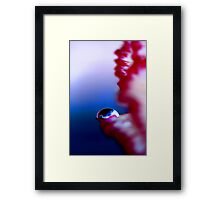 Colour Of Life XXXI Framed Print