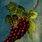 Grapes by Kostas Koutsoukanidis