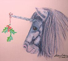 A Shetland Unicorn Does Christmas by Hilary Robinson