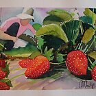 STRAWBERRYS by Marilia Martin