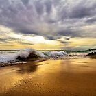 Evening Glow, Gunnamatta Beach by Danka Dear