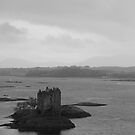 Castle Stalker Monochrome by Chuck Zacharias